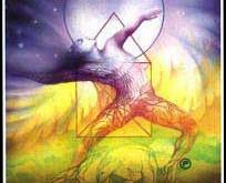 XII - Een nieuwe visie